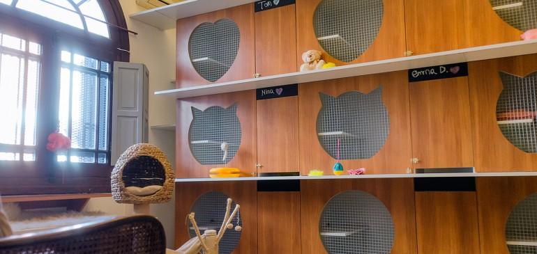 Yellow: un hotel para gatos