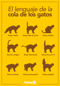 Yellow-lenguaje-cola-gatos
