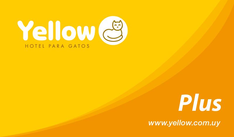 yellow-tarjeta-plus-frente